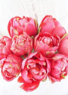 peony tulips via A Country Farmhouse