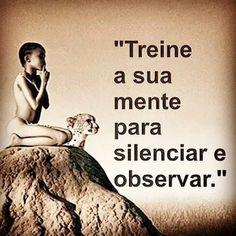 Silenciar e observar