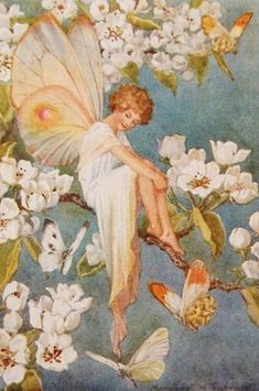 Fairy vintage illustration art