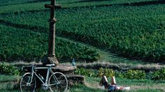 Some of the world's best cycling routes