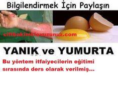 Yanık ve yumurta akı bilgilendirmek için paylaş Akita, Eggs, Breakfast, Food, Morning Coffee, Essen, Egg, Meals, Yemek