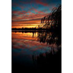 Lake Springfield Sunset Print, Sun, Waterscape, Sunset Tree, Clouds, Landscape Photograph, Nature, Fine Art Photography, 5x7, 8x10, 11x14