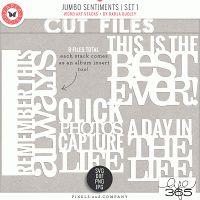Jumbo Sentiments | Set 1