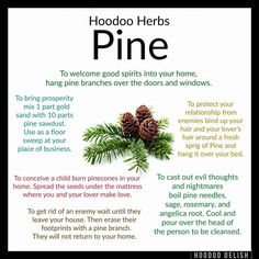 Hoodoo Tips for using Pine