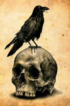 Raven and Skull Totally Edgar Allan Poe C: Kunst Tattoos, Bild Tattoos, Skull Tattoos, Dragon Tattoos, Corvo Tattoo, Rabe Tattoo, Art Noir, Totenkopf Tattoos, Raven Art