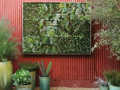 Take Your Gardening Vertical with 14 DIY Living Walls via Brit + Co