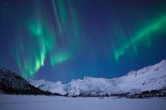 Auroras in Norway    Geir Nøtnes,   Lofoten island Norway  Feb. 14, 2011