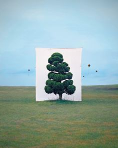 Objects out of context in landscape - Myoung Ho Lee Treescapes