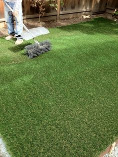 FAUX LAWN at it's best. RS McDANNELL