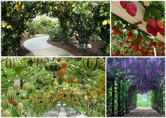 12 underbara hängande trädgårdar!