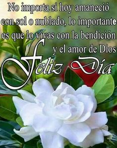 Positive Mind, Positive Words, Good Morning In Spanish, Good Day Wishes, Frases Love, Love Phrases, Friend Friendship, Faith Prayer, Mother Quotes