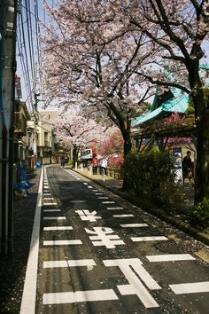 Planning to go to Japan in September. Already planning to go back during sakura season. Beautiful Places In Japan, Japon Tokyo, Japan Street, Go To Japan, Japan Japan, Aesthetic Japan, Japanese Streets, Okinawa, Japanese Culture