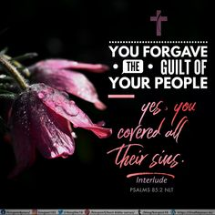 You forgave the guilt of your people— yes, you covered all their sins. Interlude Psalms 85:2 NLT