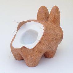 Custom Coconut Labbit!
