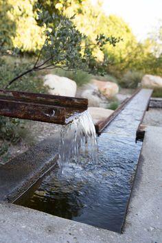 Lane Goodkind + Associates Rain Garden, Water Garden, Garden Bridge, Ecology Design, Water Walls, Paludarium, Water Element, Space Architecture, Modern Landscaping