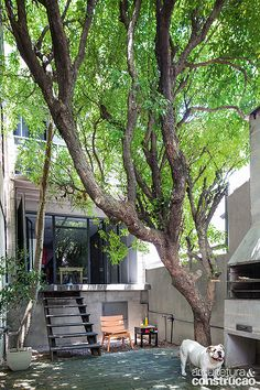Revista Arquitetura e Construção - Modesta fachada esconde um belo loft