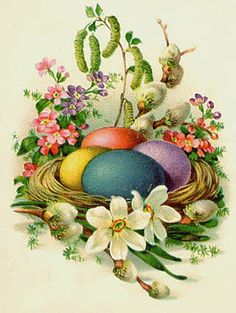 Vintage - Easter Eggs in a Nest