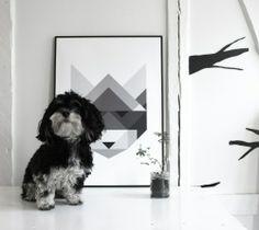 Balder + Raccoon by Silke Bonde
