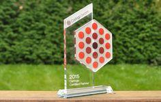 Custom made trophy for Caringo company www.glassogroup.com | #custommade #glass #customawards #customtrophies #glassogroup