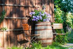 I'd love to find a whiskey barrel so I could do something like this. Outdoor Chairs, Outdoor Furniture, Outdoor Decor, Potted Plants, Plant Pots, Something To Do, Barrel, Sweet Home, Home And Garden