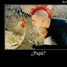 ¿Papá?  (When we're laughing it doesn't feel like work!  Now how will I use this in class...ideas?)