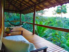 Bahia, Brazil retreat: SpiritVine.net & TheVine Center previously known as Ayahuasca-Healing have been created by Silvia Polivoy. She…