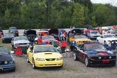 Image IPB Mustang, Ford, Bb, Photos, Vehicles, Image, Mustangs, Pictures, Photographs