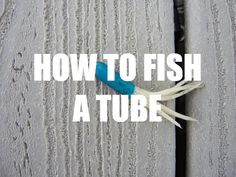 How for fish a tube for smallmouth bass Bass Fishing Lures, Fishing Tackle, Fly Fishing, Fishing Hole, Fishing 101, Fishing Stuff, Fishing Guide, Fishing Boats, Spinner Bait