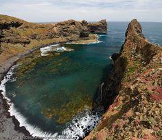 AUSTRALIA, Tasmania, Northwest, Steep Island.