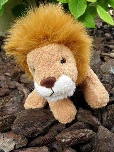 Del lleó no tinc por, pam i pipa, pam i pipa... #sortirambnens