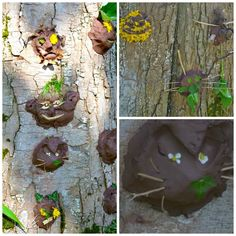 tree face Collage