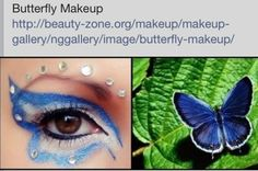 Fun Butterfly Eye