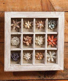 Shell & Flower Shadow Box