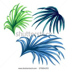 3 vector palm leaves. realistic drawing in vintage style, isolated objects - stock vector