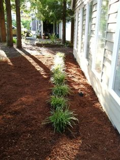 Rock Front Yard Landscaping Ideas