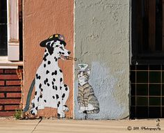 ¤ Miami,  Arizona.  Painted street cat and. . A dog. Street Art