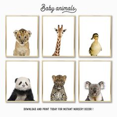 Check out all of My Pretty Print baby animals. Download and print today for instant nursery decor.