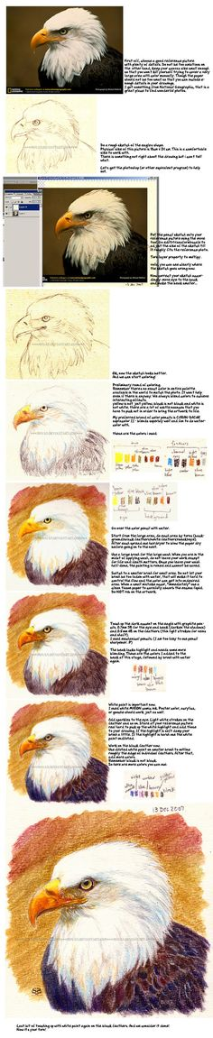 Soluble Color Pencil Tutorial by *moyan