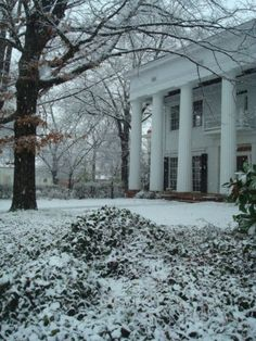 Athens, GA - rare scene, indeed!