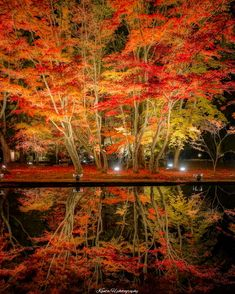 Photography Fall Nature Landscapes 64 Ideas For 2019 Autumn Scenery, Autumn Nature, Instagram Boost, Japan Landscape, Good Vibe, Japan Street, Summer Waves, Portrait Lighting, Fall Pictures