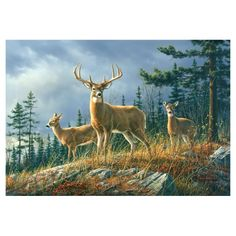 Buy 5 deer in the meadow oil painting reproduction from Toperfect's artists in reasonable prices; our painters are famous for 5 deer in the meadow paintings for sale, landscape art, portrait from photos, wall decor pictures, and more paintings on canvas.