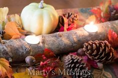 Twig centerpiece fall