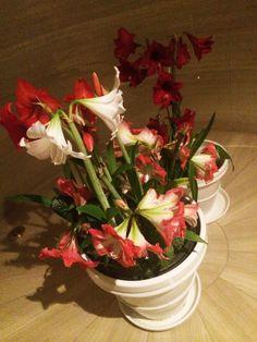 訪問する度に、新しい花が飾られている、とても行き届いた、とあるビルのエントランス。