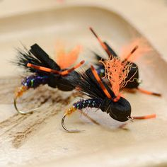Fly Fish Food -- Fly Tying and Fly Fishing : Terrestrial Bootcamp 2015: June 11th to the 14th
