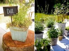 wedding centerpieces using herbs - Cerca con Google