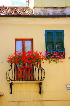 Windows in Marciana Marina, Elba, Italy