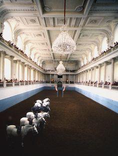 Spanish Riding School, Vienna (by davidharding)