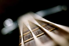 an oldie... http://www.gettyimages.ie/detail/photo/bass-guitar-royalty-free-image/460698043