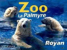 zoo de la palmyre images