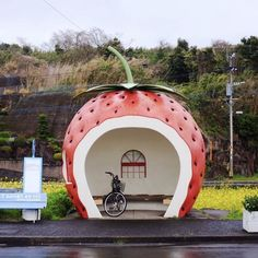 Strawberry bus stop.